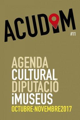 ACUDIM11